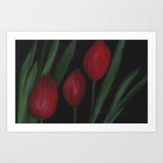Secret Tulip  Art Print