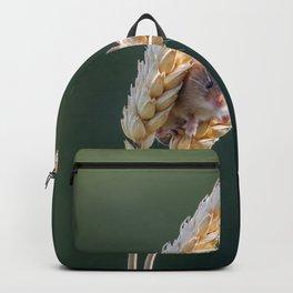 Harvest Time. Backpack