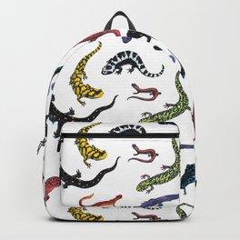 Northeastern Salamanders Backpack