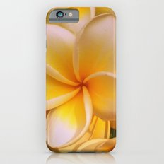 Frangipane Slim Case iPhone 6s