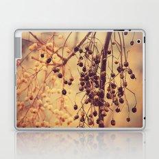 Autumn Life (II) Laptop & iPad Skin