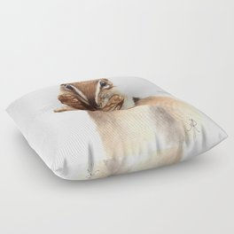Squirrel Floor Pillow