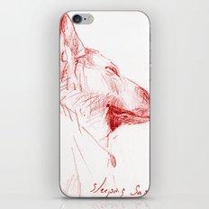 Shepherd Dreams iPhone & iPod Skin