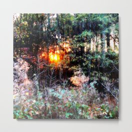 Sunset Forest : Where The Fairies Dwell Metal Print
