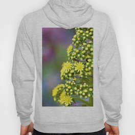 Mellow Yellow Floral by Reay of Light Photography Hoody