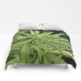 Croptober in Candyland Comforters