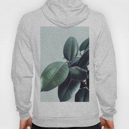 Ficus Elastica #20 #LightGreen #foliage #decor #art #society6 Hoody