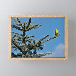 Bright Summer Morning Framed Mini Art Print