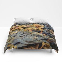 Salty Seaweed Comforters