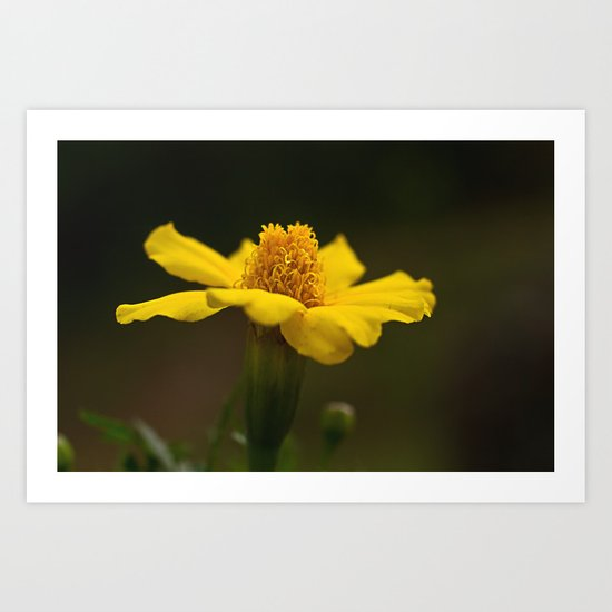 The color of HAPPY...... Art Print