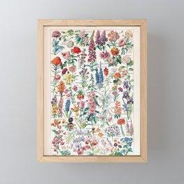 Adolphe Millot - Fleurs pour tous - French vintage poster Framed Mini Art Print