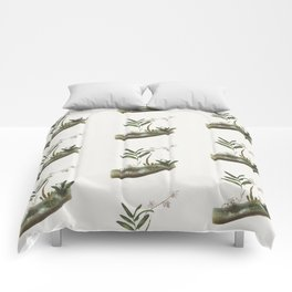 Vintage Orchid Illustration Pattern Comforters