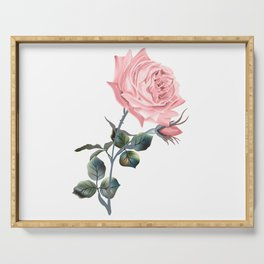 Beautiful vector pink rose in vintage antique high detailed style Serving Tray