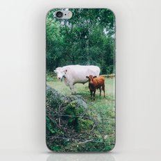 Ferdinand and Isabella iPhone & iPod Skin