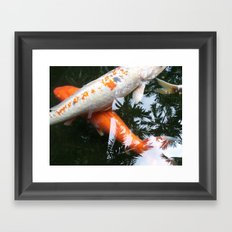 KOI -X Framed Art Print