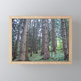 Forest Framed Mini Art Print