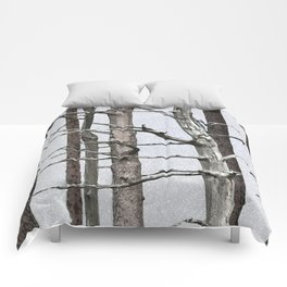 Tree life Part III Comforters
