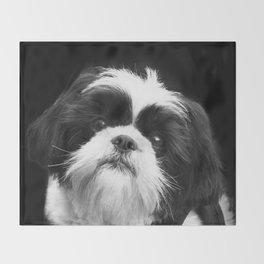 Shih Tzu Dog Decke