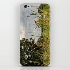 Looking Out iPhone & iPod Skin