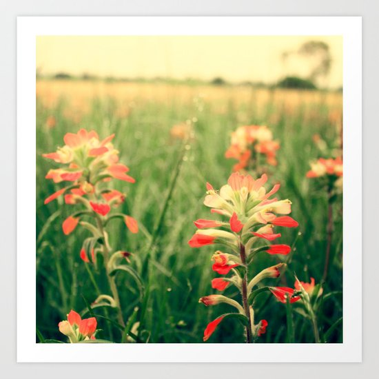Wild flowers! Art Print
