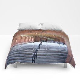 Entrance Comforters