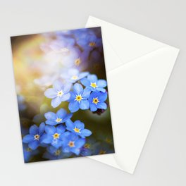 Don't Forget Me no.3863 Stationery Cards