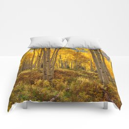 Autumn Aspen Forest Aspen Colorado Comforters