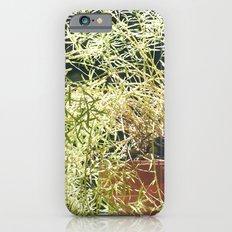 nature 1 iPhone 6s Slim Case