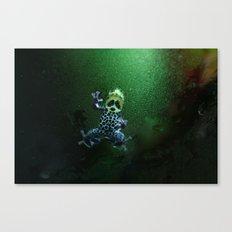 Poison Dart Frog R. Imitator Belly Canvas Print