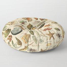 Vintage sealife and seashell illustration Floor Pillow