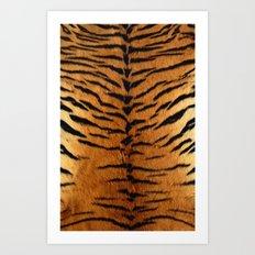 Haute Tiger Art Print