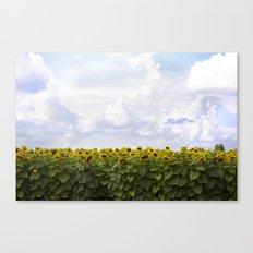 Sunshine and Sunflowers Canvas Print