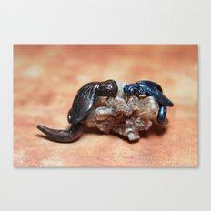 Dragons on Smokey Quartz Canvas Print