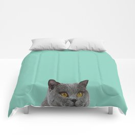 Duck Egg Blue British Short-hair Wall Decor Cat Clock Comforters
