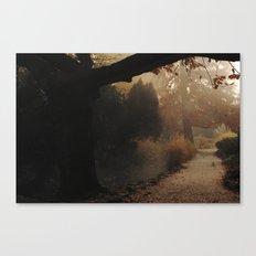 Natural mystique Canvas Print
