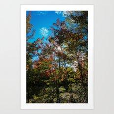 Blue Skies Above Me, Autumn Leaves Surround Me Art Print