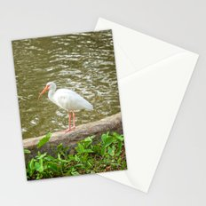 White Ibis Strikes a Pose Stationery Cards