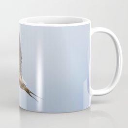 Male barn swallow in flight Coffee Mug