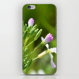 Small purple flowers iPhone Skin