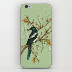 Magpie Jewels iPhone & iPod Skin