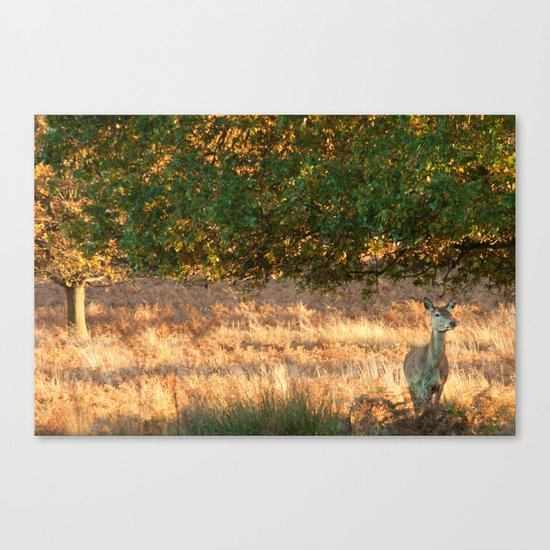 On The Watch Canvas Print