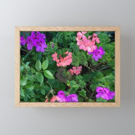 Pink and purple garden Framed Mini Art Print