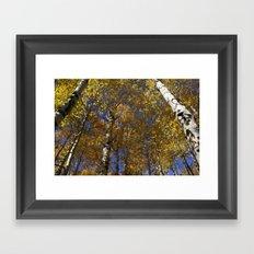 Autumn Hues Framed Art Print
