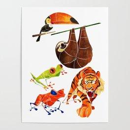 Rainforest animals 2 Poster