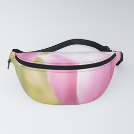 Spring is here with wonderful  colors - close-up of tulips flowers Fanny Pack