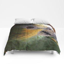 Pally Comforters