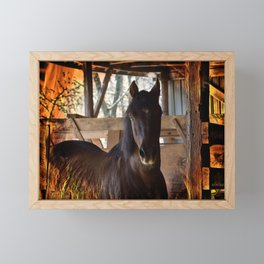 Fire Horse Framed Mini Art Print