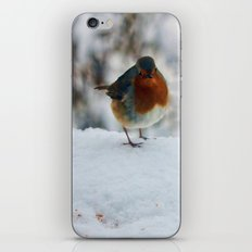Robin Redbreast iPhone & iPod Skin