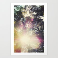 Sun/Sunflare Art Print