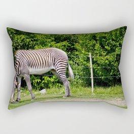 Zebra Grazing At The Toronto Zoo Rectangular Pillow